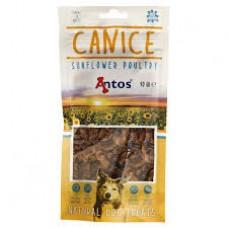Antos CANICE govedina - 80g